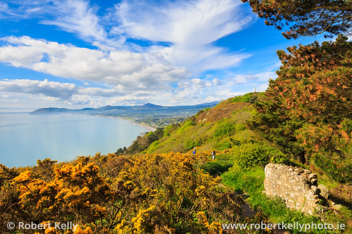 A view of Killiney Hill Park in early summer