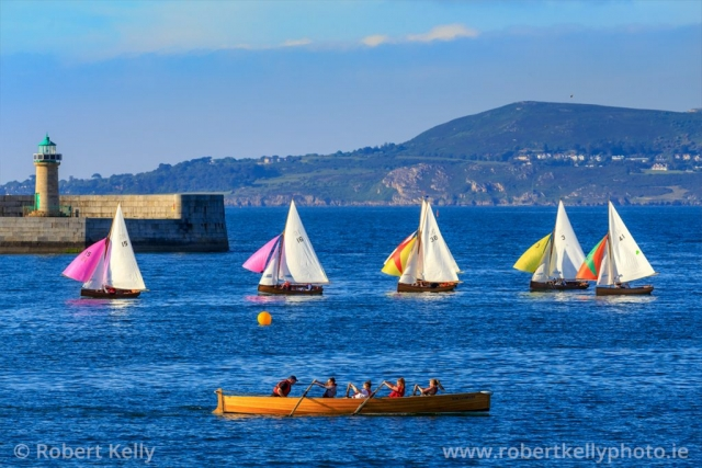 Traditional Water Wags racing in Dun Laoghaire Harbour