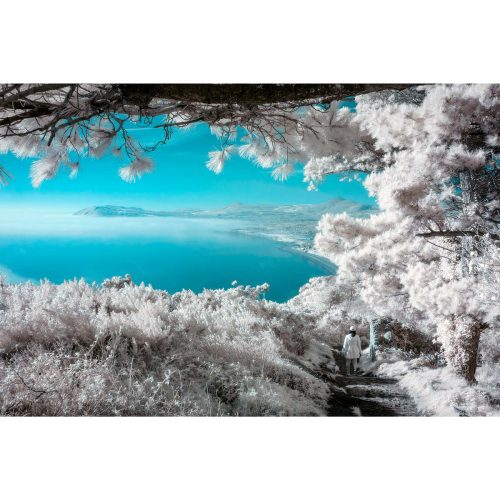 Infrared image of Killiney Bay from Dalkey Hill