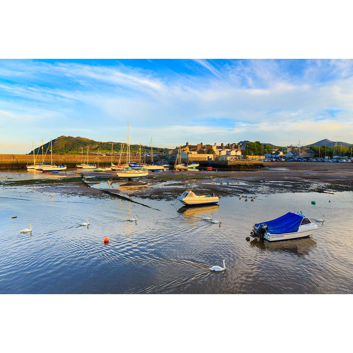 Bray Harbour and the river Dargle