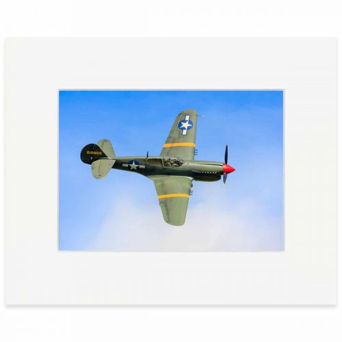 "Curtiss P-40M 8"" x 10"" print"